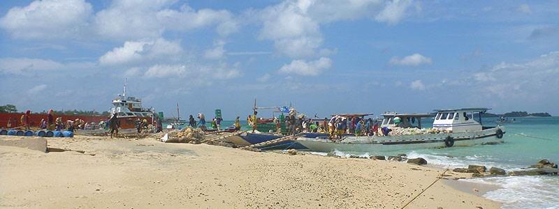 Manoc Manoc Shore